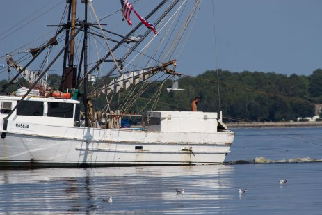 North Carolina commercial fishing vessel catching local seafood.role=